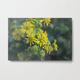 Thin Leaf Sunflowers Metal Print