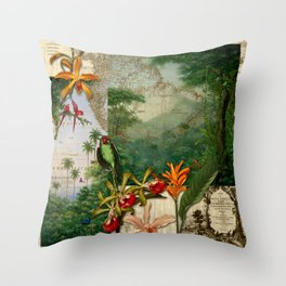America do Sul Throw Pillow