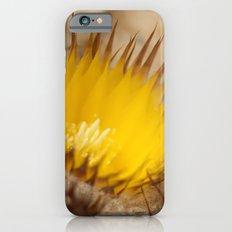 Desert Flower 159 iPhone 6 Slim Case