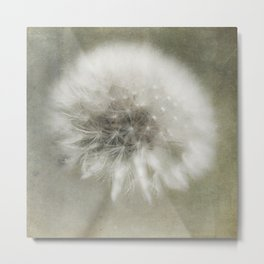 The Dandelion  Metal Print