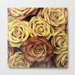 Autumn Roses Photo Metal Print