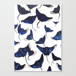 Manta Ray Canvas Print