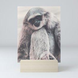 Silvery Gibbon Mini Art Print