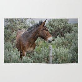 Mule in Wyoming Rug