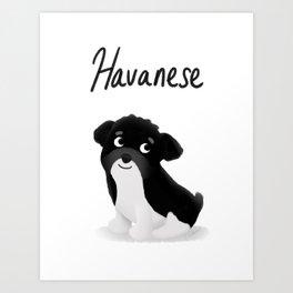 Havanese - Cute Dog Series Art Print