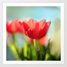 RED TULIPS IN THE SUN Art Print