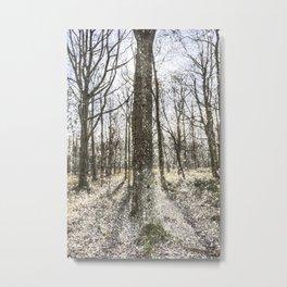 English Snow Forest Metal Print