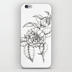 Bold & Fine iPhone & iPod Skin