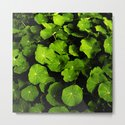 green leafs VIII by blackpool