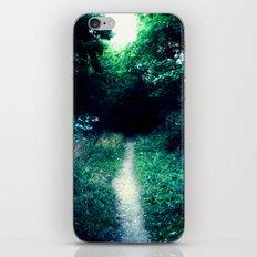 Path II iPhone & iPod Skin