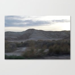 Death Valley Plants Yellow And Brown Tones At Dusk Spring Bloom 2016 Canvas Print