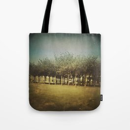 Somewhere a Park / Un parque de algún lugar Tote Bag