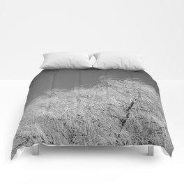 Spring Breeze, Port Hope, Ontario Comforters