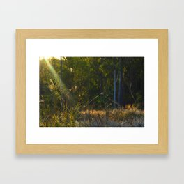 Late Afternoon, Later Framed Art Print