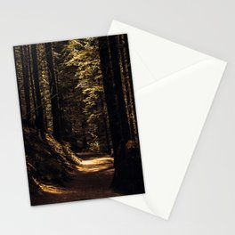 Forest path Stationery Cards