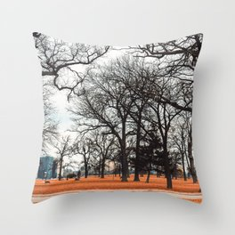 Park view at Belle isle in Detroit Throw Pillow