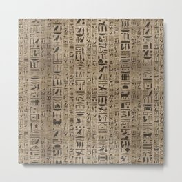 Egyptian hieroglyphs on wooden texture Metal Print