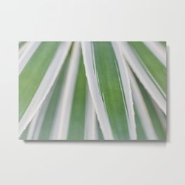 Stripes by Nature Metal Print