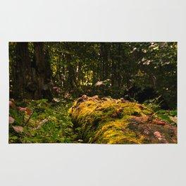 Fallen Log Rug