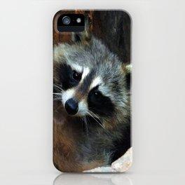 Raccoon Reclining Wildlife Photo Art iPhone Case