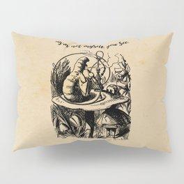 Not Myself - Lewis Carroll - Alice in Wonderland Pillow Sham