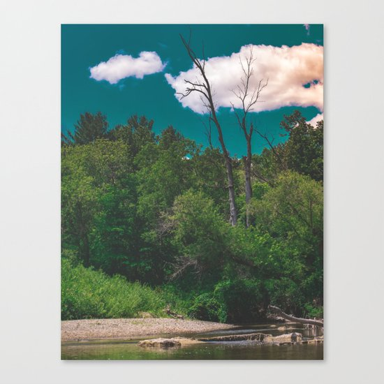 River Days Canvas Print