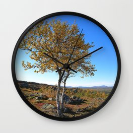 Autumn in the mountains a sunny day with blue sky. Birch with yellow leaves. Wall Clock