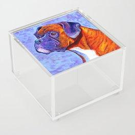 Colorful Brindle Boxer Dog Acrylic Box