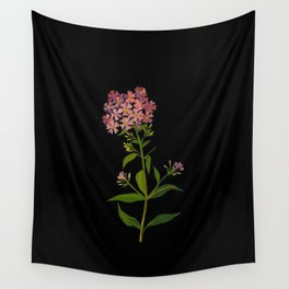 Phlox Undulata Mary Delany Vintage British Floral Flower Paper Collage Black Background Wall Tapestry