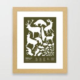 Mammals of the British Isles Framed Art Print