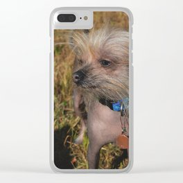 Little Stevie Clear iPhone Case