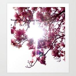 Springtime Bliss Art Print