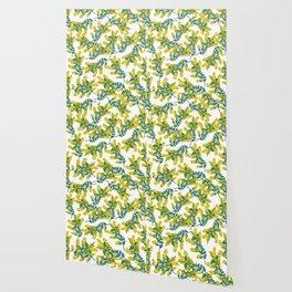 Australian Wattle Wallpaper