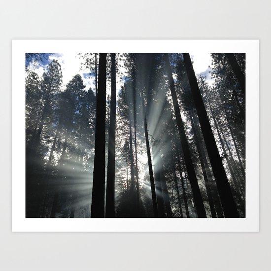 Yosemite National Park, USA Art Print