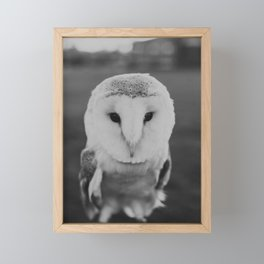 Black and White Owl Framed Mini Art Print