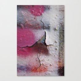 Pink Rumble Canvas Print