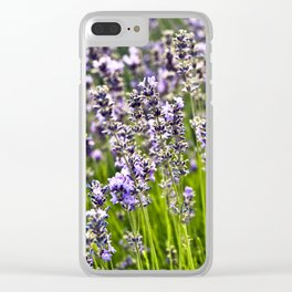 French Blue Lavender Clear iPhone Case