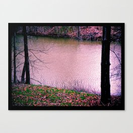Serine Spot Canvas Print