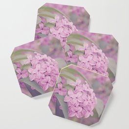 AFE Pink Lilacs Coaster