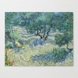 Olive Orchard by Vincent van Gogh Canvas Print