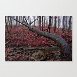 Honey Hollow Pond Canvas Print