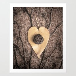 Heart Leaf Art Print