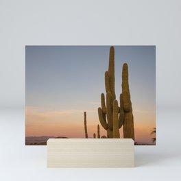 Saguaros at Sunset, Desert Photography, Twentynine Palms, Joshua Tree National Park, Cacti Photography, Cactus Mini Art Print