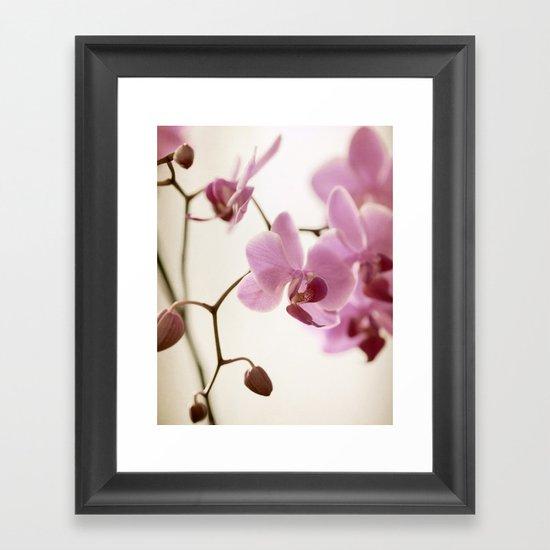 Seraphina Framed Art Print