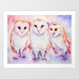 Watercolor Barn Owl Family 3 Barn Owls Abstract Art Print