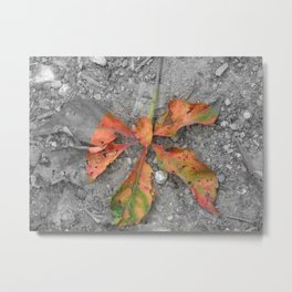 Some - Color Metal Print