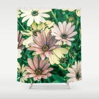 daisies Shower Curtains featuring Daisies by Loredana