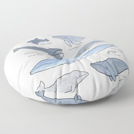 Whales Dolphins & Porpoises Floor Pillow