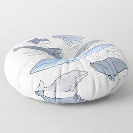 Whales Dolphins & Porpoises Floor Pillow