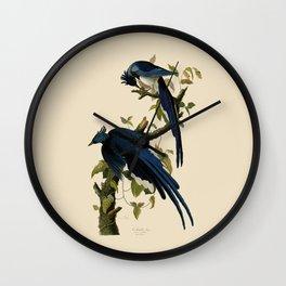 Columbia Jay Illustration by J.J. Audubon Wall Clock